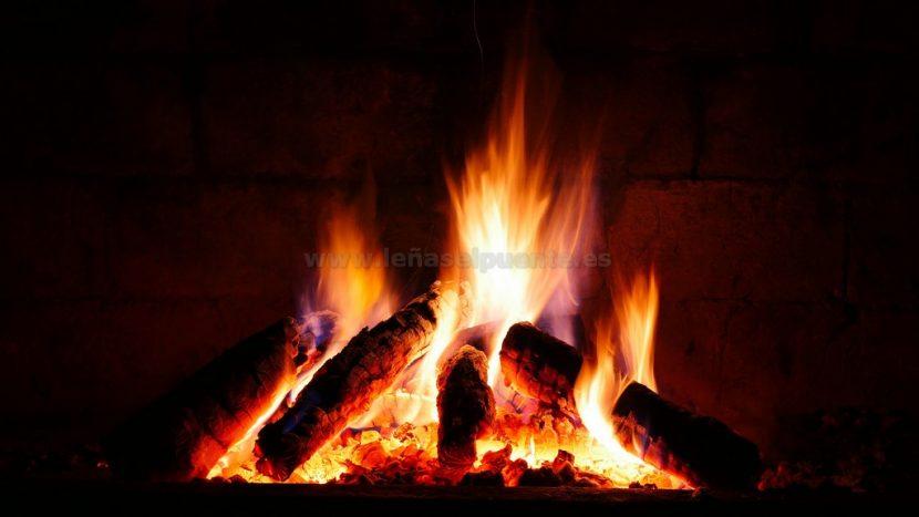 Fuego chimenea