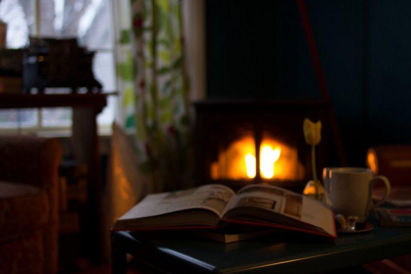 La mejor lectura delante de tu chimenea con leña de encina